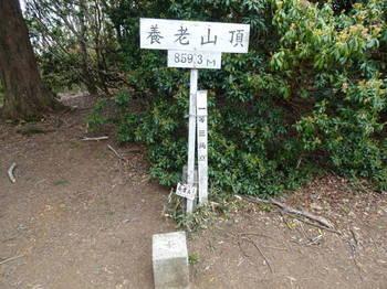 DSC012610021.JPG