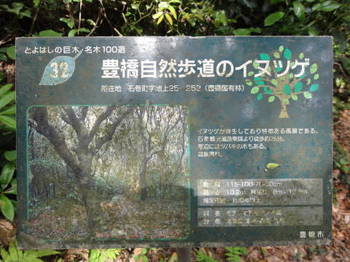 DSC031890001.JPG