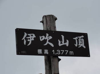DSC036120009.JPG